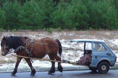 «Лошадиная сила» или как одна никому неизвестная лошадь вошла в историю мирового автопрома.